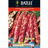 Batlle mongeta borlotto 0577