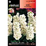 Batlle alhelí excelsior blanc