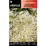 Batlle gipsofila vivaz paniculata