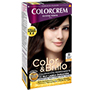 Colorcrem color & brillo 30 castany fosc