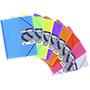 Carpeta maxiplas 30 fundas con sobre 39893199