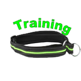 Collar training 30x350mm