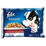 Felix fantas carnes 4u 12176571