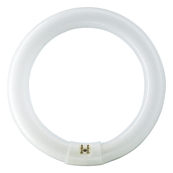 Fluorescent TLE Circular 40W/840/54/765 Philips
