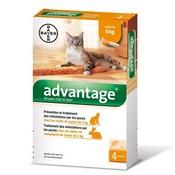 Advantage gats de 0-4 kg