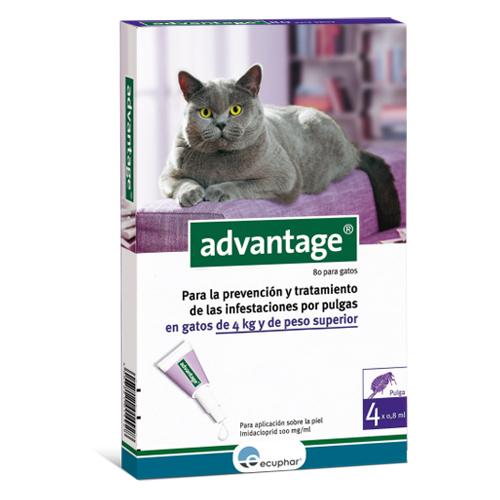 Advantage gats mes de 4 kg.