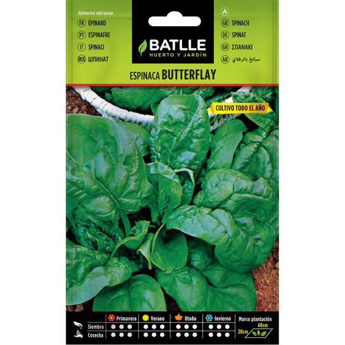 Batlle espinacs butterflay 13506