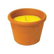 Test citronela 45G