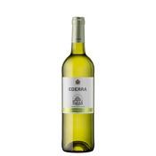 Vi blanc Ederra rueda Verdejo.