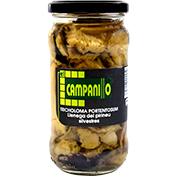 Llanega tricholoma portentosum El campanillo