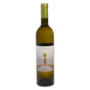 Vi blanc Ca N'estruch Xarel·lo