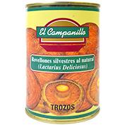 Rovelló Trossos Campanillo lactarius deliciosus