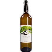 Vi blanc collita Valdovín