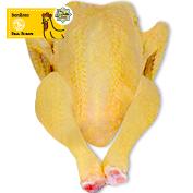 Pollastre groc extra Halal